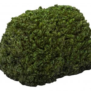 MW03-033 Topiary Hedge 1
