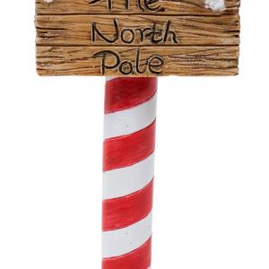 MW91-004 North Pole